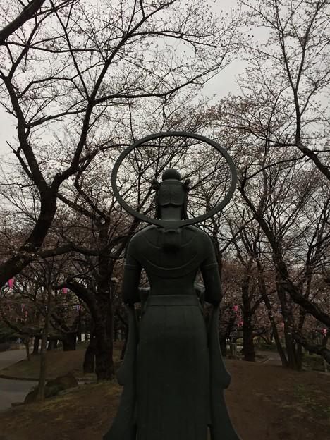 3月_飛鳥山公園 2