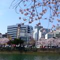 Photos: 猿猴川 荒神橋 猿猴橋 広島市南区的場町 2015年4月2日