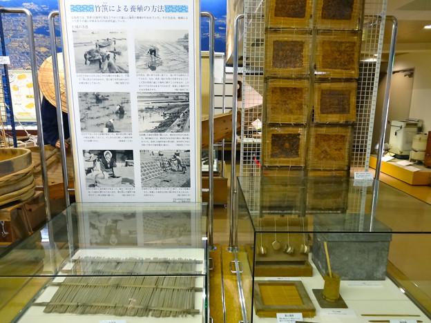 広島市郷土資料館 1階 常設展示 ノリ養殖 す 簀 広島市南区宇品御幸2丁目