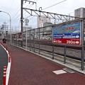 Photos: 広島駅まで410m 広島市南区猿猴橋町 カープロード