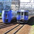 Photos: 183と283が並んだ。 @函館本線 白石駅