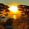 雪に輝く松島