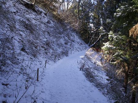 最も雪が深かった場所(紅葉台)