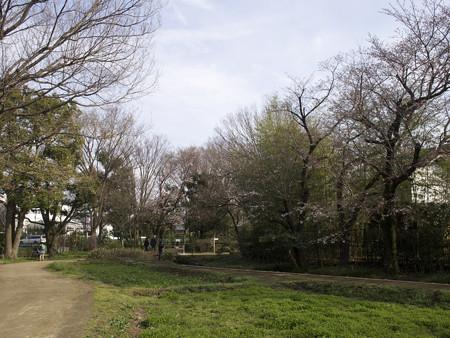 次大夫堀公園(3)