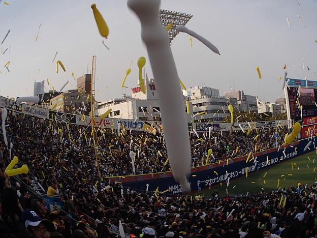 オープン戦 横浜スタジアム 2015/3/15