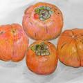 大きな柿と普通サイズの柿