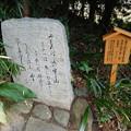 写真: 飛鳥坐神社境内の万葉歌碑 (1)