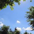 今日の北広島市の空