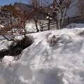 庭にはまだ1メートルの積雪が!