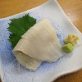 Photos: 烏賊