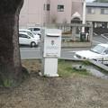 徳島本線石井駅前の白ポスト、向かって左。(2015年)