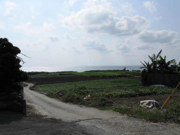 畑と道と海