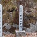 写真: 群馬県神流町 恐竜の足跡 084