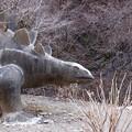 写真: 群馬県神流町 恐竜の足跡 072