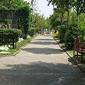 写真: 公園の中の小道