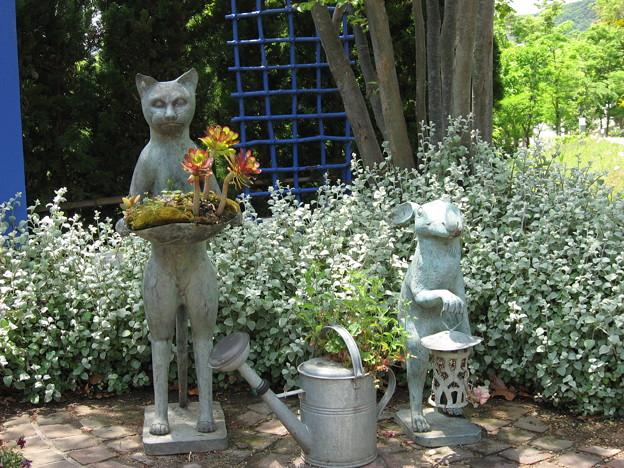 写真: 猫とウサギのお出迎え