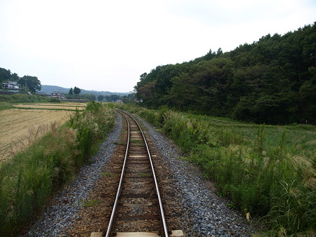 烏山線の車窓(小塙→滝)7