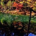 写真: 青の池 2