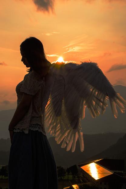 夕焼けの天使