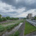 写真: #2 芥川桜堤公園