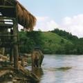 写真: メーコック川象乗り場  Kok River Elefant Riding