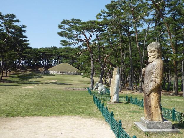 春闌の掛陵、慶州 Royal Tomb of Silla Period       *髭面の武士(もののふ)護る陵(みささぎ)の和(にこ)草揺らし風そよと過ぐ
