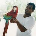コンゴウインコとガイド Macaws & our guide