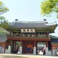 新緑の水原華城行宮(あんぐう) Hwaseong temporary palace*さっそうとふたりの衛士の現れて緑眩しき行宮の門