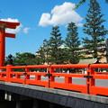 慶流橋と鳥居と美術館 Torii & Museum from Keiryu bridge