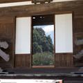Photos: 森