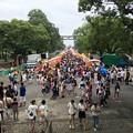 写真: 夏祭り