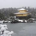 雪の鹿苑寺金閣 2