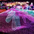 2月4日伊豆グランパル公園からのイルミネーション~話題とあって素晴らしいですね(^ ^)
