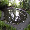 写真: 新次郎池【都名湧水】 30082016
