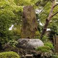 写真: 草木供養塔 密蔵院 10092016