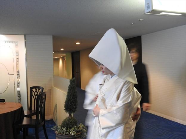 娘の結婚05 前撮り(白無垢)