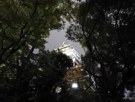 広島城ライトアップ05 黒城が白城に見えます