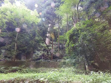 2016.7 貴船神社奥宮(元画像)