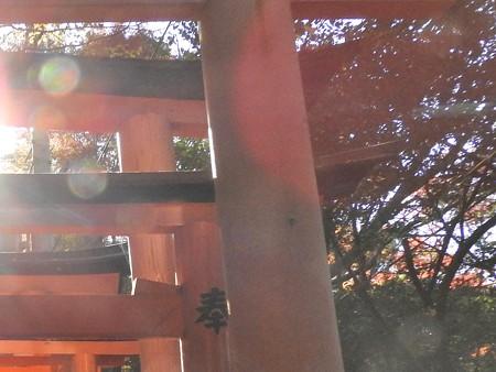 2015.12 伏見稲荷大社06