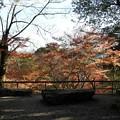 写真: 石山寺71 若宮5