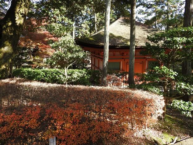 写真: 石山寺102 心経堂