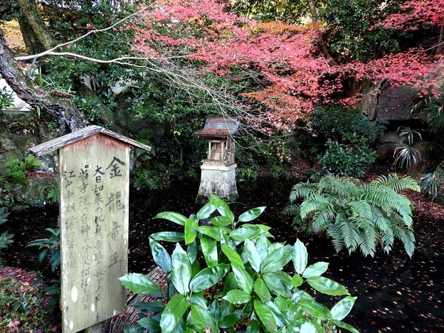 写真: 石山寺118 金龍竜王社3