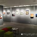 Photos: IMG_1687