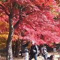 Photos: 上田城址公園