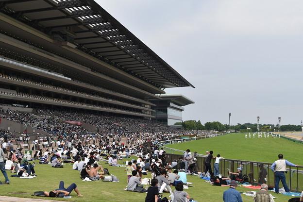 東京競馬場(西門側から)