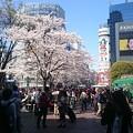 写真: 渋谷いっただ