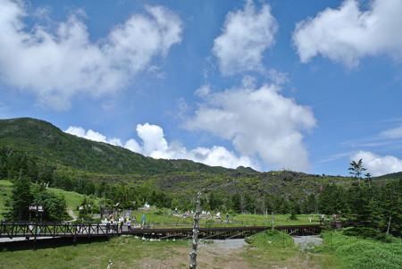 夏・八ヶ岳