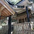 pz1659rs 根道神社