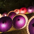 Photos: 和傘