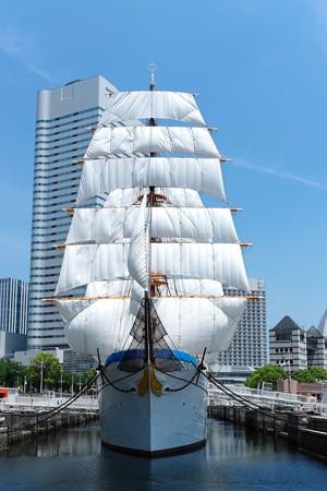 2015.05.17 日本丸 総帆展帆